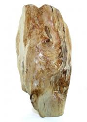 Versteinertes Holz, Baumstamm aus Indonesien, ca. 8,3 Kg