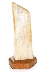 Versteinertes Holz mit Holzsockel, ca. 22 cm