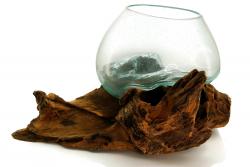 Glasvase auf Kaffeeholzwurzel groß, ca. 1,9 Kg, Unikat, Dekoglas aus Indonesien