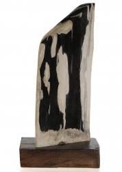 Versteinertes Holz mit Holzsockel, ca. 5,2 Kg, poliert, Unikat