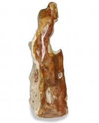 Versteinertes Holz, Baumstamm aus Indonesien, ca. 23,3 Kg, ca. 68 cm