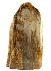 Versteinertes Holz, Unikat, ca. 13,3 Kg