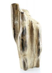 Versteinertes Holz, Unikat, ca. 9,2 Kg schwer